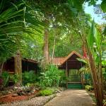CR-TOR-Hotel-Pachira-Lodge-01