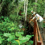 PE-PEM-Hotel-Reserva-Amazonica-03
