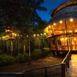 PE-IQT-Hotel-Treehouse-Lodge-00