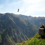 Peru Holiday Adventures | Colca Canyon, Condor Cross, Arequipa, The Wonders of Peru