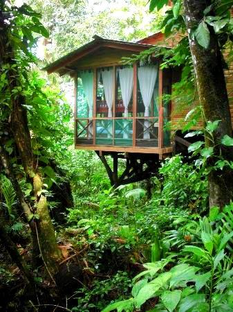 Hamanasi Resort holiday accommodation in Belize, Americas ...  |Belize Treehouse Accommodation Near Beach