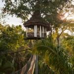 Exotic Amazon TreeHouse & Machu Picchu
