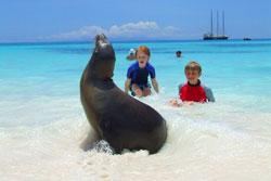 Galapagos Travel Vacations